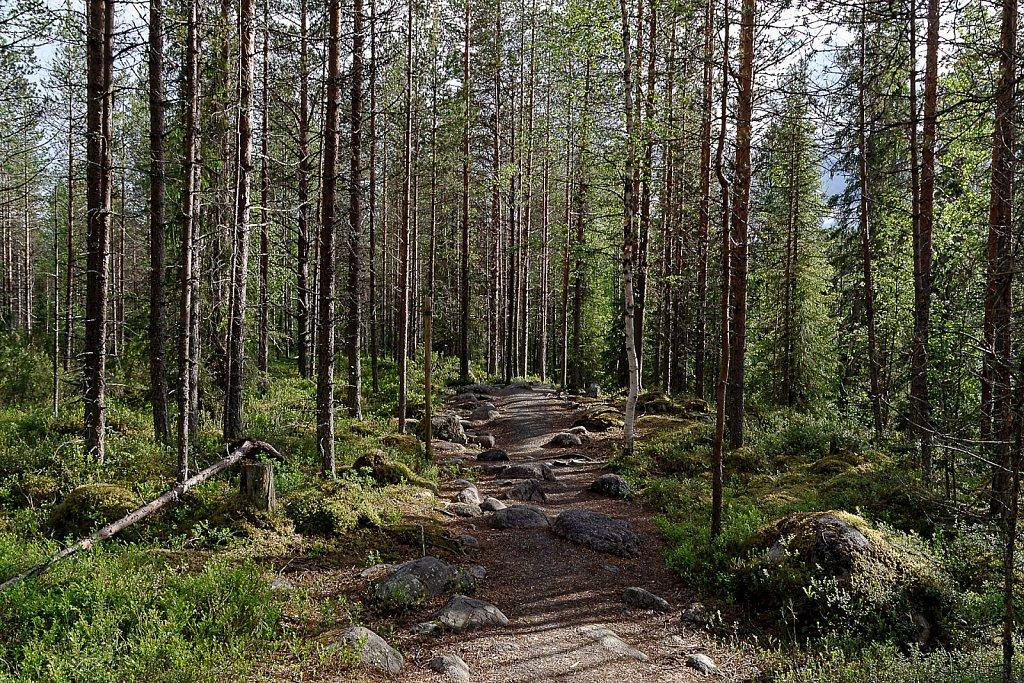 Scandinavien-045-DxO.jpg