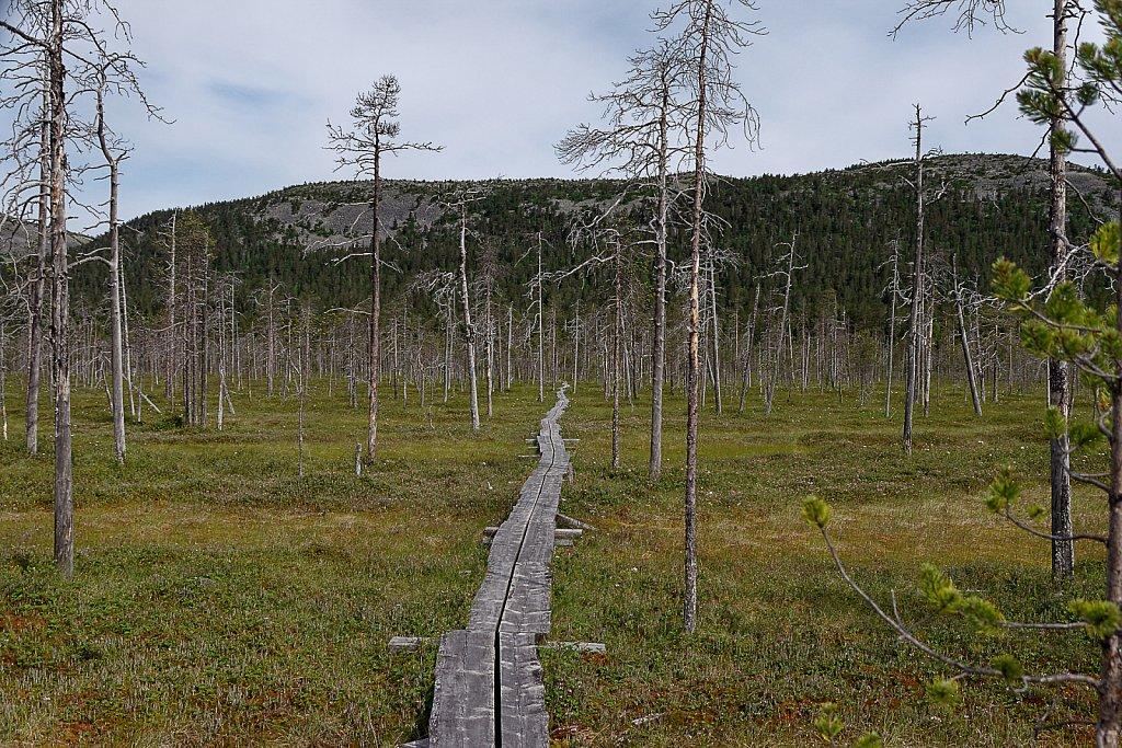 Scandinavien-088-DxO.jpg